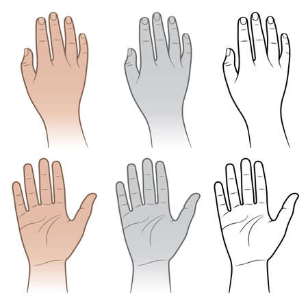 Woman, man tanned & grey hands isolated on white (vector illustration)