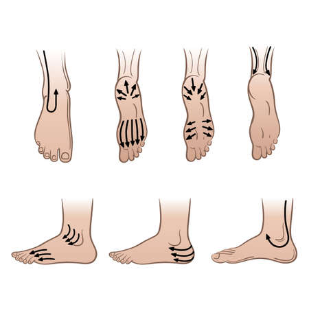 Closeup man feet with massaging lines isolated on white background, vector illustration