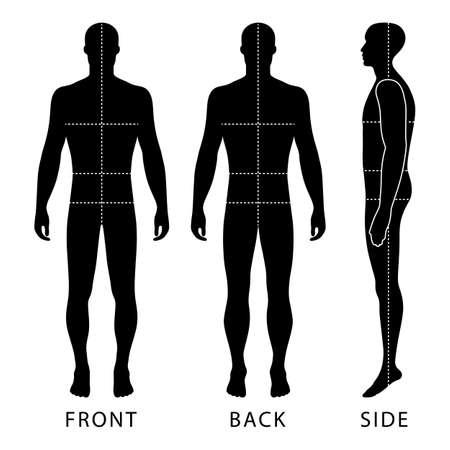 proportions of man: Fashion body full length bald template figure silhouette with marked bodys sizes lines  (front, back and side view), vector illustration isolated on white background