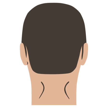 Man hairstyle head set of back view, vector illustration isolated on white background