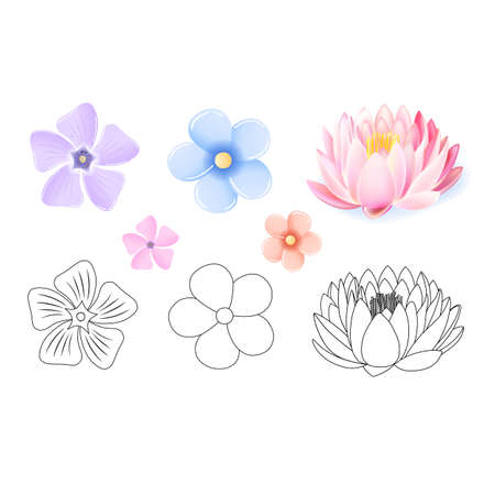 Pink lotus, periwinkle, forget-me-not pattern flower set isolated on white background (vector illustration) Ilustrace
