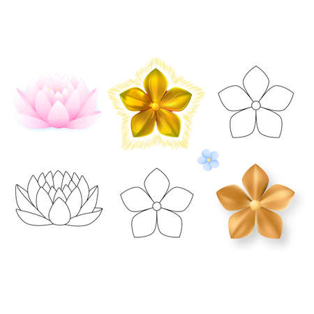 Pink lotus, forget-me-not pattern flower set isolated on white background (vector illustration)