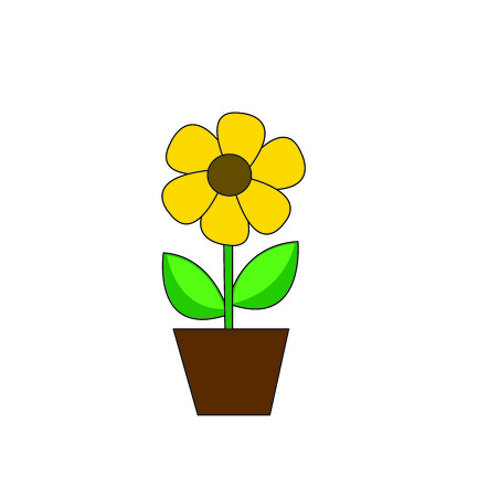 pedicle: sunflower flower pedicle nature illustration yellow summer bright natural flora beautiful