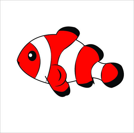 Layered of isolated Clownfish with white background. photo