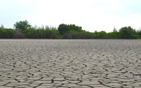 pattani thailand: Una tierra de la grieta en el ambiente �rido, Pattani, Tailandia