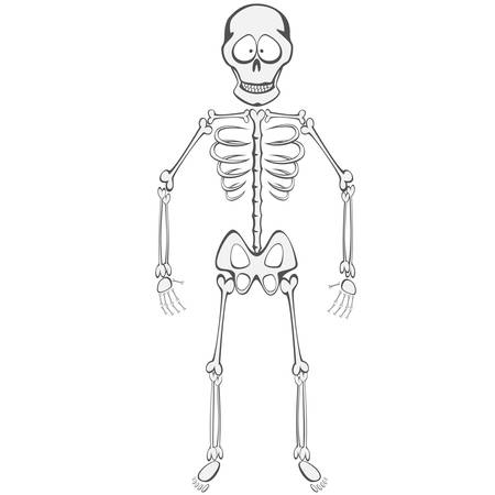 buddy: Skeleton Buddy - A funny skeleton mascot standing and smiling Illustration