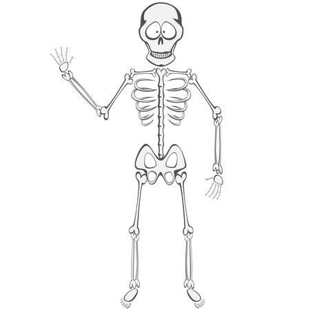 buddy: Skeleton Buddy - A funny skeleton mascot standing and waving Illustration