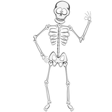 buddy: Skeleton Buddy - A funny skeleton standing and showing ok sign