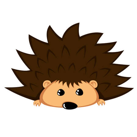 Hedgehog with begging eyes.