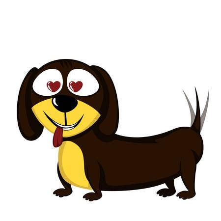 Lovely little dachshund in love