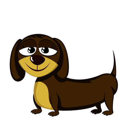 Lovely little dachshund  Vector illustration.