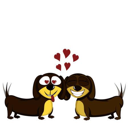 Lovely little dachshunds in love