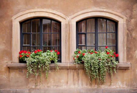 sag: Bunches of vibrant Plectranthus Coleoides and red Pelargonium flowering on windowsill in Warsaw Old Town, late summertime in Poland. Beautiful ornamental plants outdoors and architecture detail in Poland. Horizontal orientation