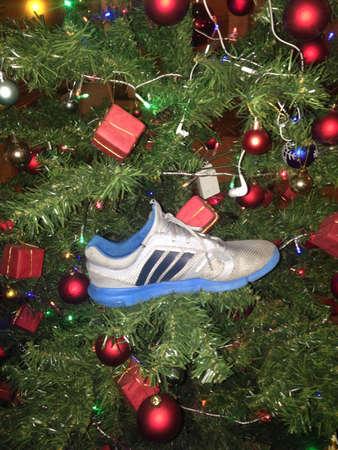 adidas: X-mas tree growing shoe