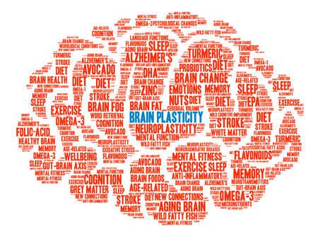 Brain Plasticity Brain word cloud on a white background. Ilustracja