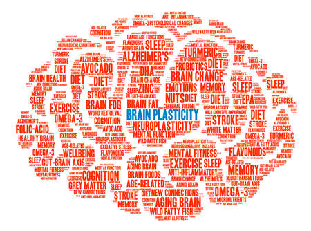 Brain Plasticity Brain word cloud on a white background. Illustration