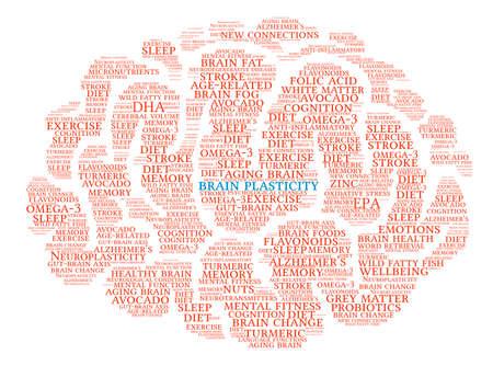 Brain Plasticity Brain word cloud on a white background. Illustration