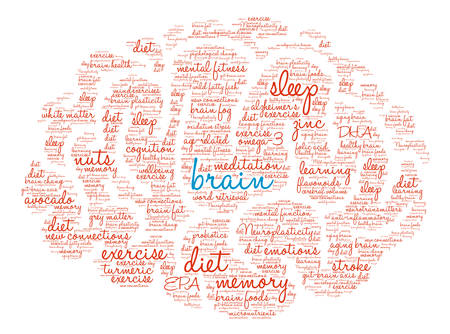 brain aging: Brain word cloud on a white background. Illustration
