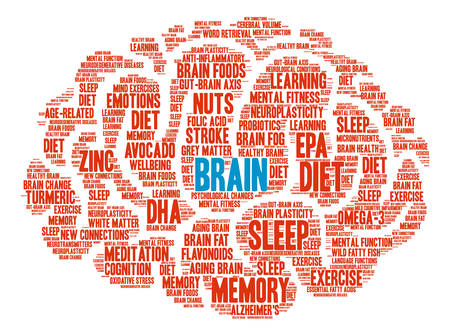 Brain word cloud on a white background.  イラスト・ベクター素材