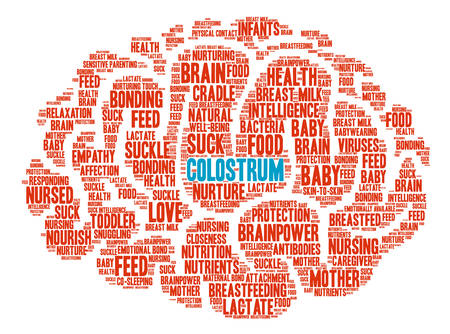 Colostrum Brain word cloud on a white background. Illusztráció