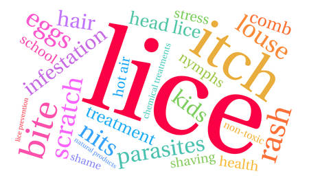 head louse: Lice word cloud on a white background.