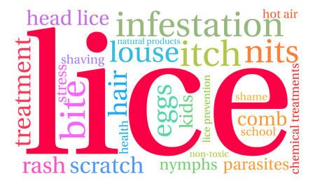 lice: Lice word cloud on a white background.