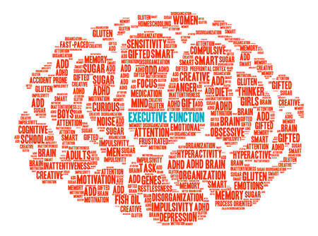 Executive Function Brain word cloud on a white background.