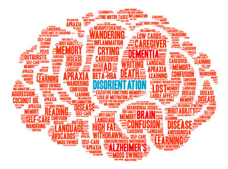 Disorientation Brain word cloud on a white background. Illustration