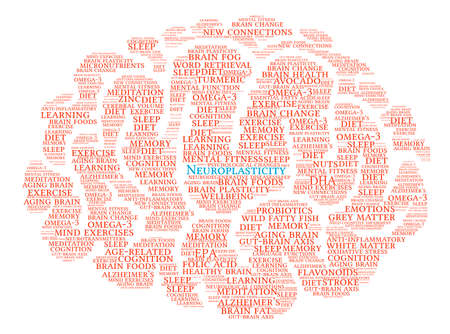 brain aging: Neuroplasticity Brain word cloud on a white background.