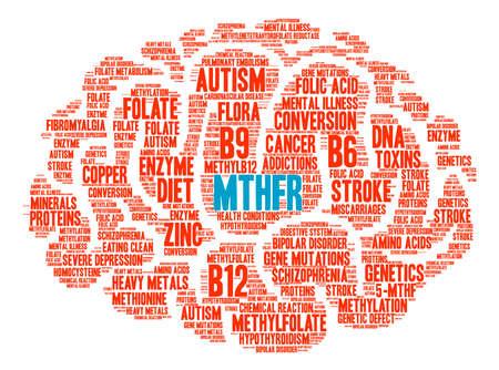 MTHFR Brain word cloud on a white background.