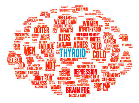 muscle gain: Thyroid Brain word cloud on a white background.