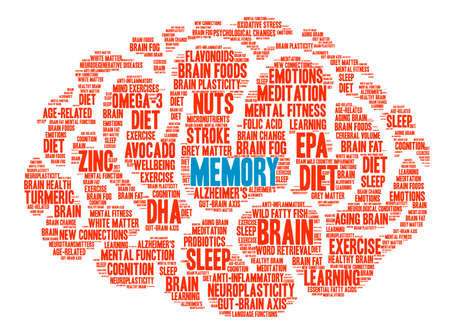 synaptic: Memory Brain word cloud on a white background.