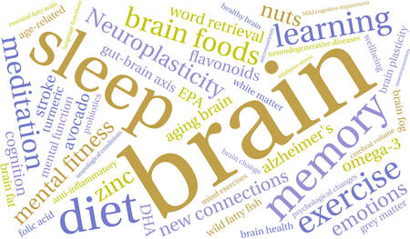 Brain word cloud on a white background. 向量圖像