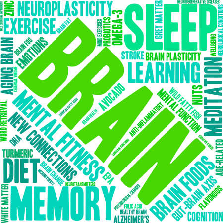 Brain word cloud on a white background. Illustration