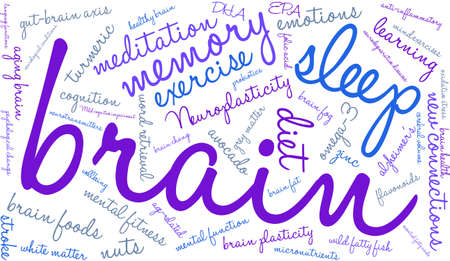 Brain word cloud on a white background. Ilustrace