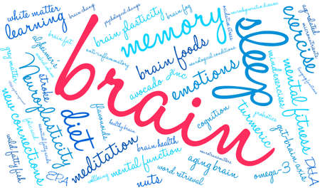 synaptic: Brain word cloud on a white background. Illustration
