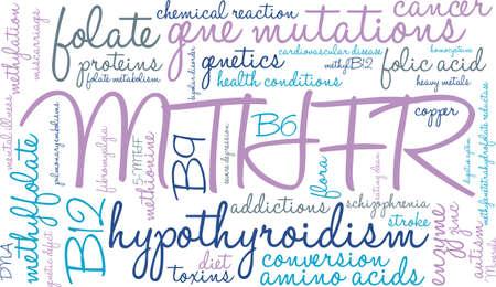 MTHFR word cloud on a white background. Vectores