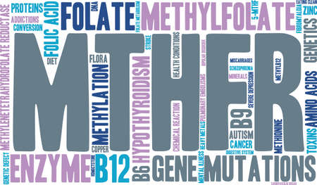 MTHFR word cloud on a white background.