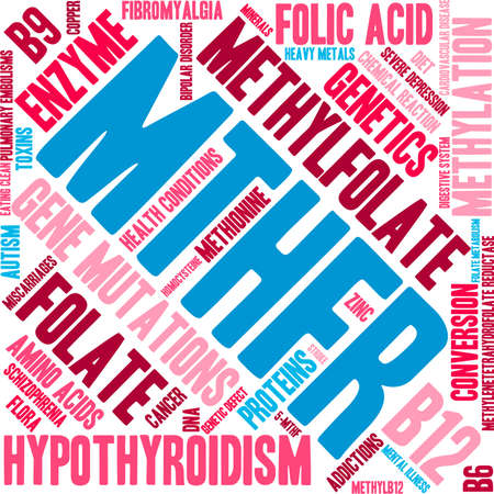 MTHFR word cloud on a white background. Illusztráció