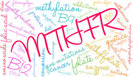 MTHFR word cloud on a white background. Illustration