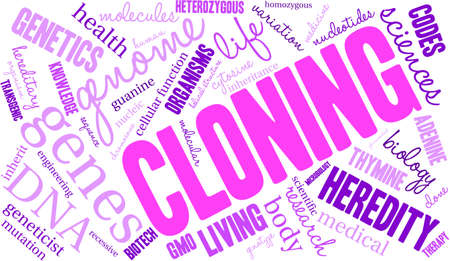 inheritance: Cloning word cloud on a white background.