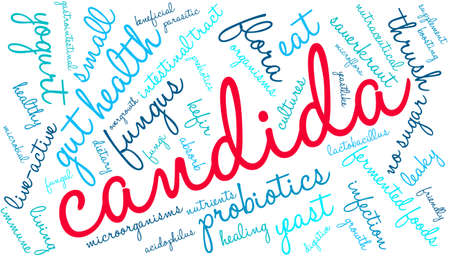 candida: Candida word cloud on a white background.
