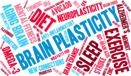 Brain Plasticity word cloud on a white background. Çizim