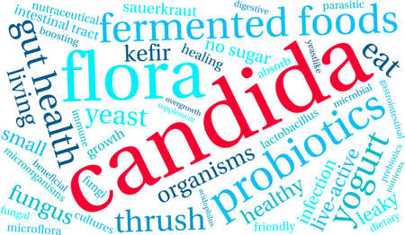 absorb: Candida word cloud on a white background.