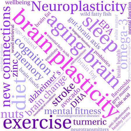 Brain Plasticity word cloud on a white background. Stock Illustratie