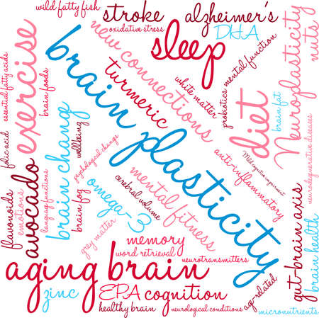 Brain Plasticity word cloud on a white background. Illustration