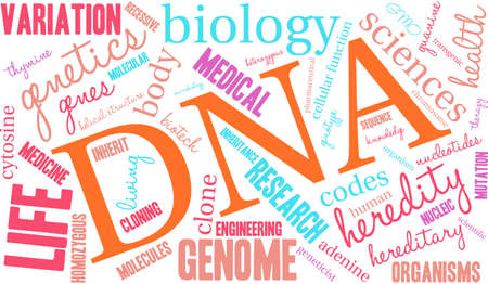 DNA word cloud on a white background. Illustration