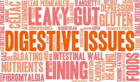 food absorption: Digestive Issues word cloud on a white background.