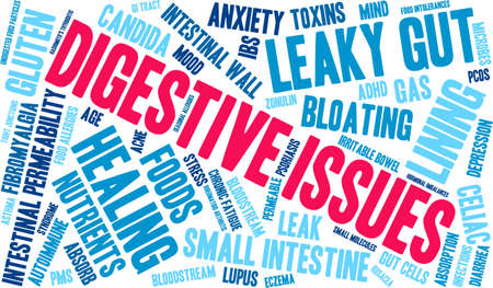 absorption: Digestive Issues word cloud on a white background.