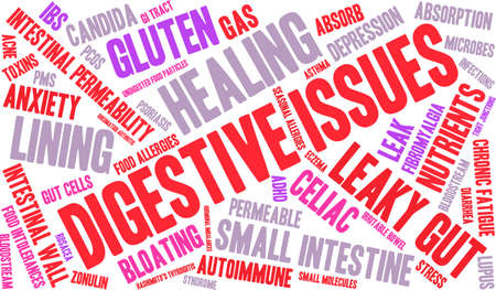 pms: Digestive Issues word cloud on a white background.